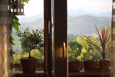 2010 10 Aug_3348_window