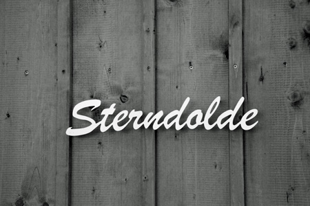 Sterndolde_2011 15 Jan_5409_
